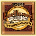 Акустические cтруны Ernie Ball Earthwood 12-string Medium P02012